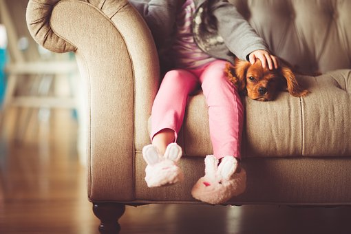 a-guide-to-living-with-asthma-and-pets