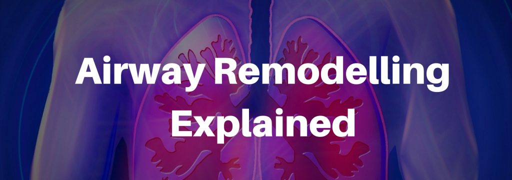 airway-remodelling-explained